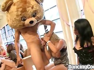 Dancingcock Dancing Bear