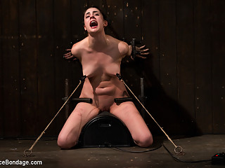 Lori Adorable in The Harder The Bondage The Harder They Cum: Innocent Brunette Demolished - DeviceBo